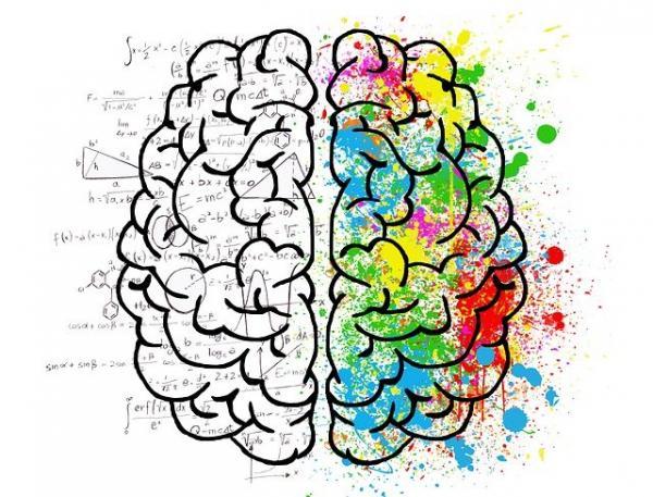 Le cerveau est constamment en activité, il est submergé par toutes sortes de défis, de craintes et de soucis. La fatigue et l'insomnie sont des fléaux de la société moderne. (Image : ElisaRiva/Pixabay)