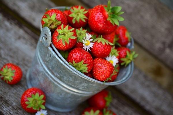 Quel était donc le nom de ce nutriment ? euh! Zut ! Quelque chose qui a un goût délicieux et qui est bon pour améliorer la mémoire. (Image : congerdesign/Pixabay)