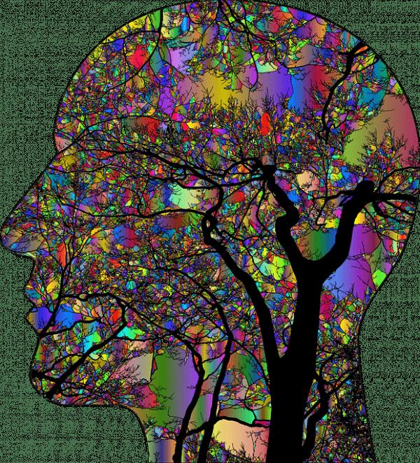 L'interconnexion entre le corps et l'esprit est souvent sous-estimée. (Image :Gordon Johnson/Pixabay)