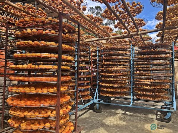 Ces kakis sèchent au soleil sur des supports en bambou. (Image : Julia Fu / Vision Times)