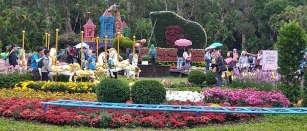 Le Taipei Shilin Residence Chrysanthemum Show est l'un des festivals de fleurs les plus populaires de Taiwan. (Image : avec l'aimable autorisation de Chen Xiuluan)