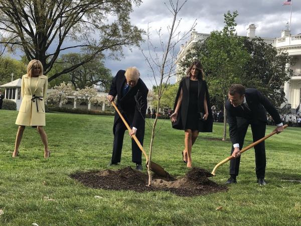 Le président Donald Trump et la première dame Melania, le président Emmanuel Macron et son épouse Brigitte, plantent un arbre à la Maison Blanche au début de la première visite officielle du leader français à Washington, le 23 avril 2018. (Image : wikimedia / Steven L. Herman / Domaine public)