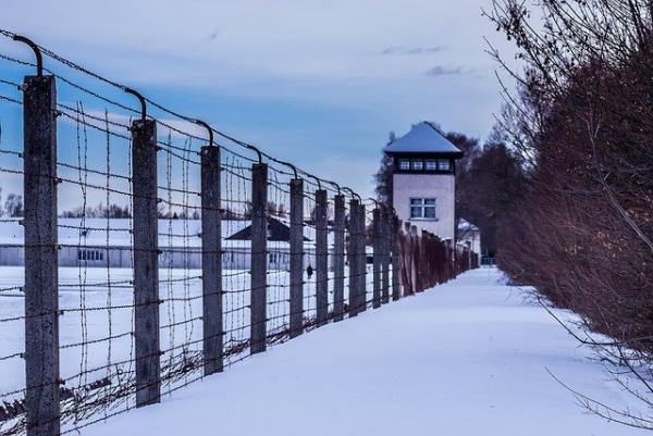 Dorit Oliver Wolff, survivante de l'Holocauste, a appelé les députés à mettre de côté les politiques partisanes et à soutenir l'amendement. (Image :Jordan Holiday/Pixabay)