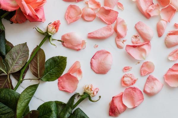 Les pétales de rose présentent de nombreux bienfaits pour la santé. Elles peuvent apaiser le foie et réguler le qi, ce qui contribue à des sentiments positifs. (Image : Karolina Grabowska/Pexels)
