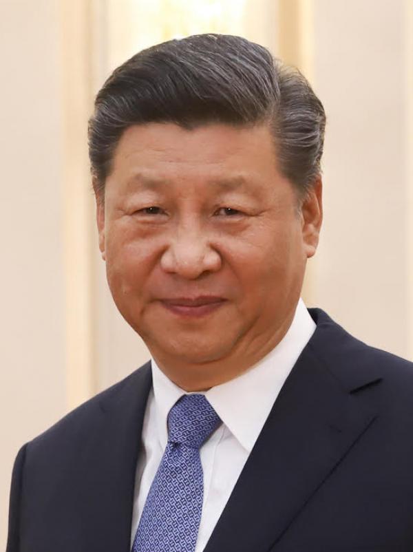 Mention par Xi Jinping du concept d'histoire du parti