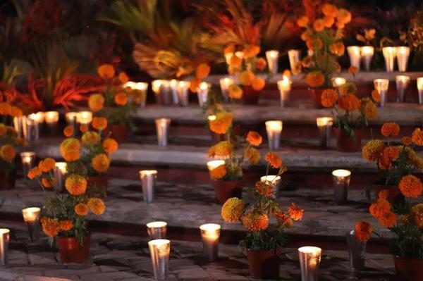 Les habitants de Wuhan achètent des fleurs pour rendre hommage à leurs proches décédés avant le jour de l'an, ce qui provoque l'interruption du marché aux fleurs de la ville et suscite l'inquiétude du public. (Image : Danie Blind / Pixabay)