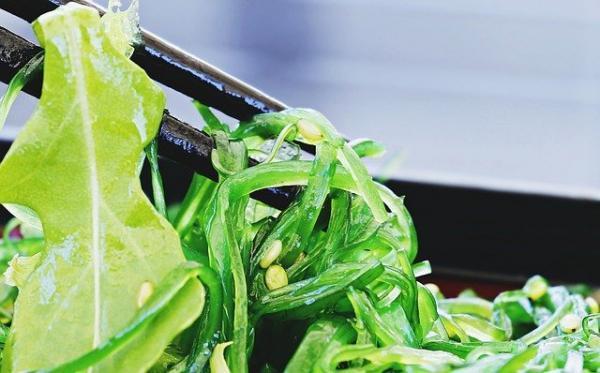 Salade d'algues. (Image : S. Hermann & F. Richter / Pixabay)