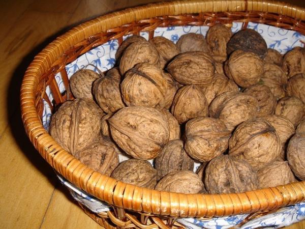 Les noix, riches en oméga 3 et en vitamine E, favorisent une peau plus lisse, des cheveux plus vigoureux et des os plus solides. (Image :Rudolf Langer/Pixabay)