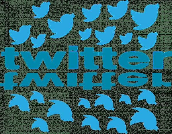 La suspension arbitraire de comptes et de messages de la part de Twitter a suscité de nombreuses critiques ces derniers mois. (Image :Dsndrn-Videolar/Pixabay)
