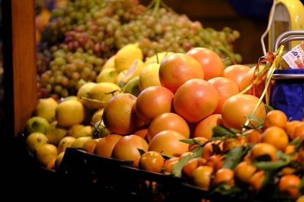 Affamé et assoiffé, le fugitif a été attiré par les oranges d'un stand de fruits. (Image :Bruno /Germany/Pixabay)