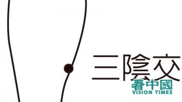 Le point Sanyinjiao (三陰交) est un point réputé pour le traitement des troubles endocriniens et de la neurasthénie. (Image : avec l'aimable autorisation du Dr Wen Pinrong)
