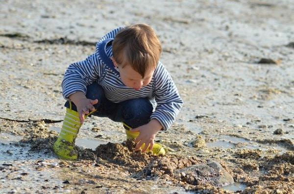 Il n'y a rien de mal à emmener les enfants à la plage, au musée ou dans un parc d'attractions, affirme Michaeleen Doucleff. (Image :Nadine Doerlé/Pixabay)