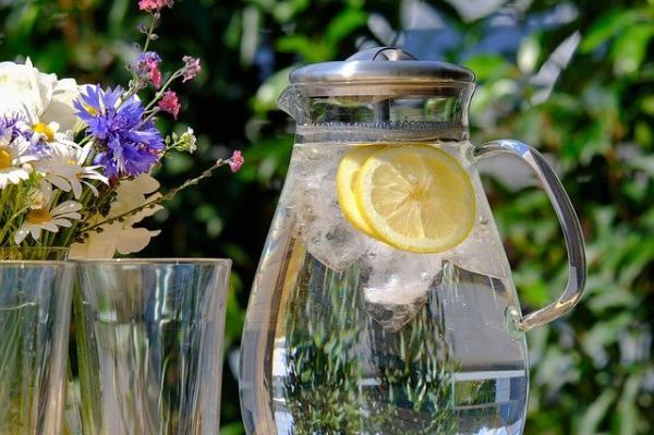 Un manque d'eau affecte le métabolisme des reins et entrave l'évacuation des déchets. (Image :NickyPe/Pixabay)