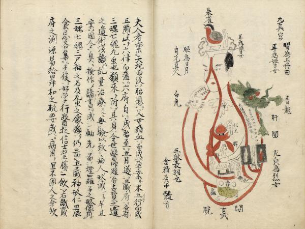 Le sutra des cinq viscères de Jīvaka. (Image : Musée Nationale du Palais deTaiwan / @CC BY 4.0)