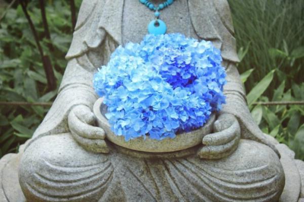 Chaque acte et chaque pensée dans votre vie se reflètent dans votre apparence. (Image :Weiqi Xiong/Unsplash)