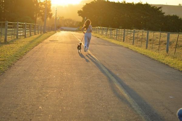 « On peut donc, par l'exercice et la tempérance, conserver dans ses dernières années quelque chose de son ancienne vigueur ». – Cicéron. (Image :KarinaCarvalho/Pixabay)