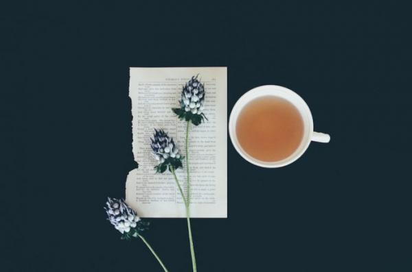 Le thé: sa fabrication et ses étonnants bienfaits sur la santé